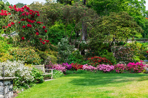 Foto auf Leinwand Garten Beautiful Garden with blooming trees during spring time, Wales, UK
