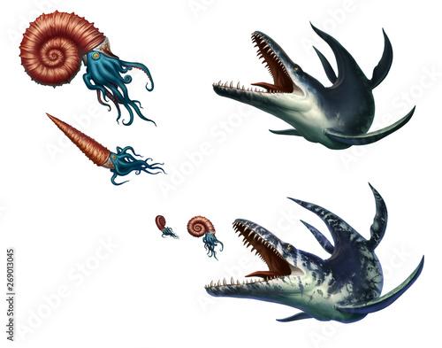 Fototapeta Kronosaurus was a marine reptile hunts ammonite