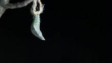 Born Butterfly Wooden Stick Da...