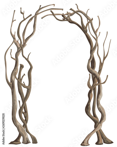 Photo Rustic arch with tree branches