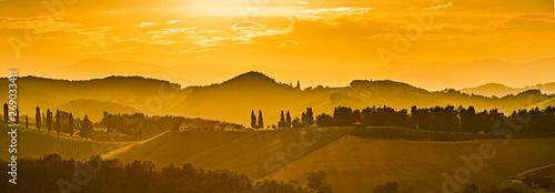Deurstickers Honing Vineyards in Austria south Styria, wine country,