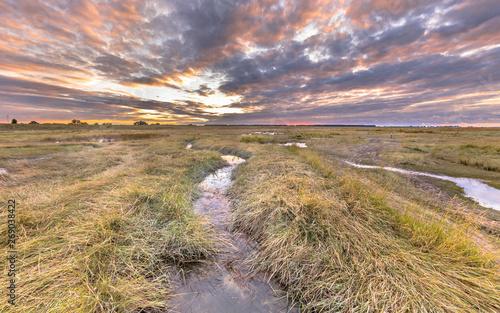 Foto Channel in Tidal Marshland nature reserve Saeftinghe
