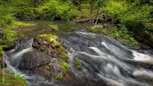 Stream with spring runoff through Tillman's Ravine in Stokes State Forest, NJ