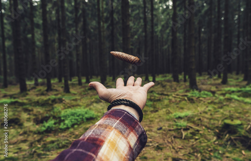 Photo  hiker throw up a pine cone in the forest