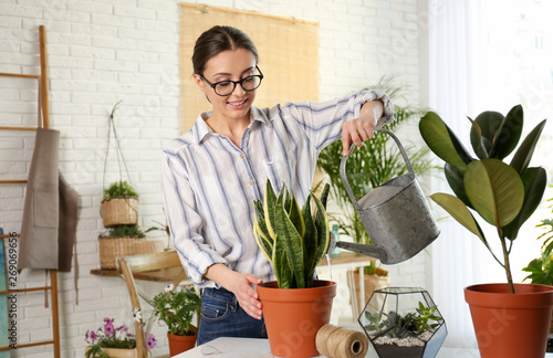 Obraz Young woman watering potted plant at home - fototapety do salonu