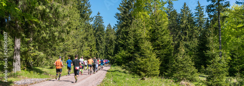 Fotografía People trail running in a forest panorama
