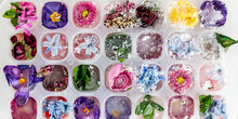 Tray With Frozen Flowers In Ice Cubes On Grey Background, Top View, Close Up Image