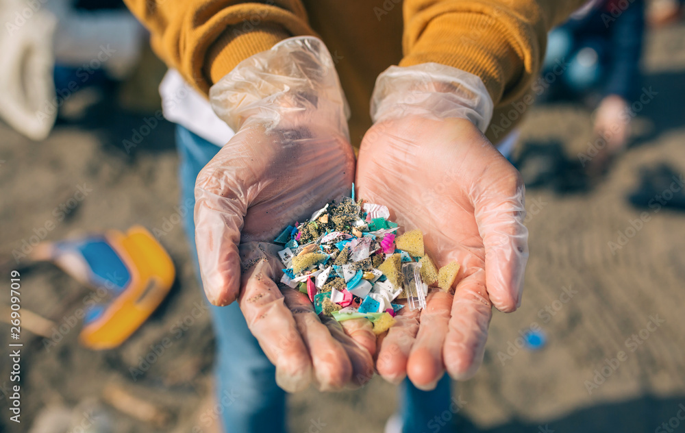 Fototapeta Detail of hands showing microplastics on the beach