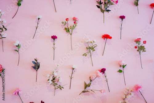Cadres-photo bureau Fleuriste beautiful flower background, colorful nature