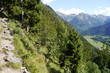 Wanderweg im Allgäu in den Alpen bei Bad Hindelang
