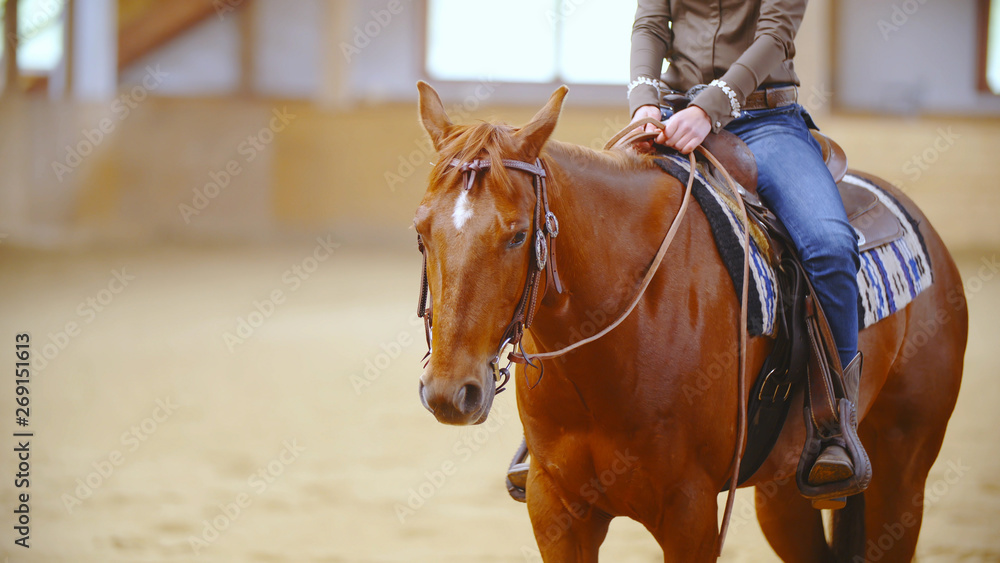 Fototapety, obrazy: Western horse with a headless cowboy in saddle