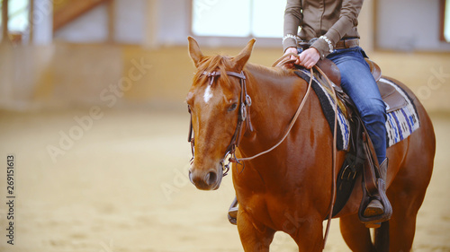 Photo  Western horse with a headless cowboy in saddle