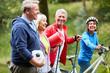 Vitale Senioren als Freunde machen Sport