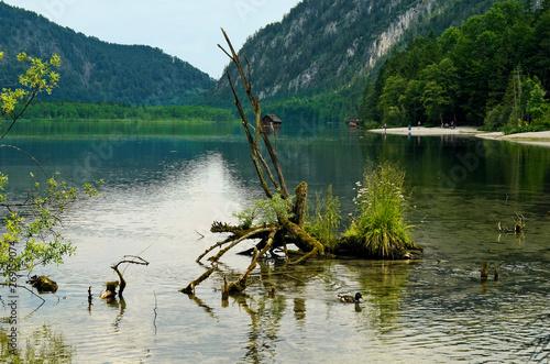 Photo Austria, Almsee