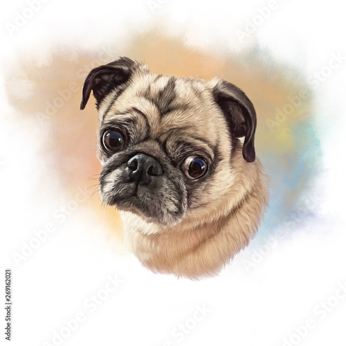 Cute Pug Dog On Watercolor Background Watercolor Animal Art Collection Dogs Dog Pug Portrait Hand Painted Illustration Of Pets Good For Banner T Shirt Card Buy This Stock Illustration And Explore