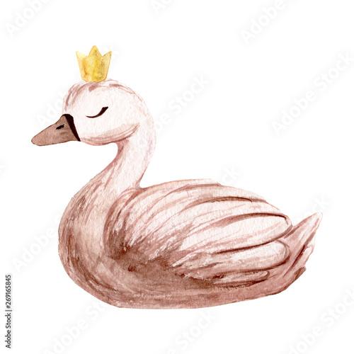 Fotografia Watercolor swan