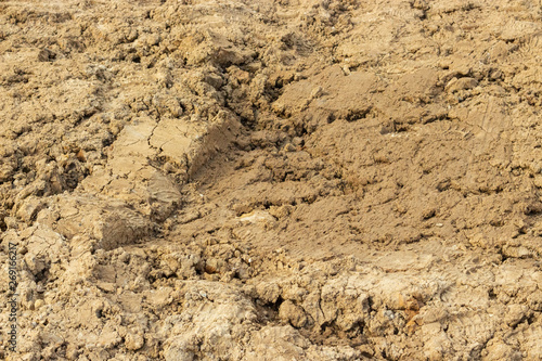 Ground dirt soil soil sand clay alumina texture background close-up Wallpaper Mural