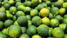 Calamansi Green Limes In Market