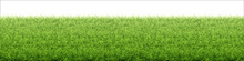 Green Grass Lawn. Border From Fresh Grass Field. Background For Design Natural Countryside Landscape.