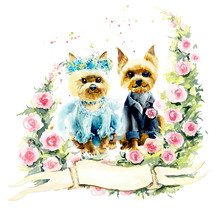Wedding Yorkshire Terrier. Watercolor Hand Drawn Illustration