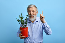 Pleasant Happy Man Pointing Up While Holding A Busket With Flower.senior Man Has Great Idea, Plan How To Grow Beautiful House Flowers . Studio Shot.