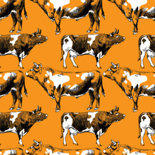 Seamless Pattern With Cows. Freehand Drawing. Vintage Background. Cows And Bulls.  Texture Watercolor Paint.