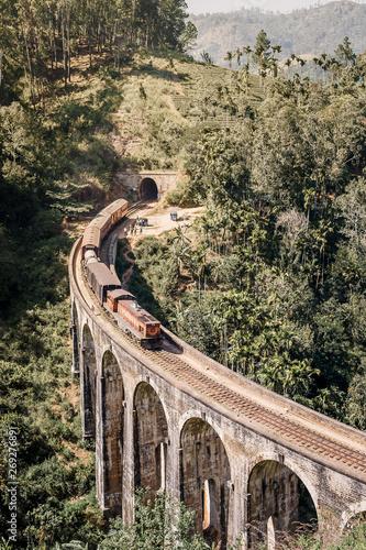 Blue train goes through jungle Canvas Print