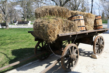 Horse Carriage With Hay