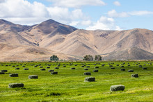 Hay Bales In Field By Mountain...