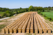 Rows Of Firewood Stacked On Pallets Ready For Transport. Part Of Surrounding Landscape Visible.