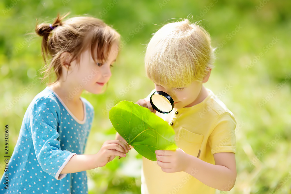Fototapety, obrazy: Kids exploring nature with magnifying glass. Close-up. Little boy and girl looking on leaf with magnifier.