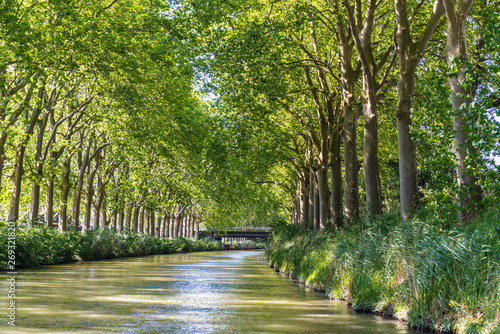 Fotomural Summer look on Canal du Midi canal in Toulouse, southern Franc