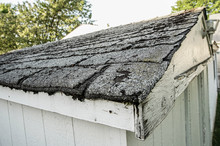 Roof Shingles Are Old And Need To Be Replaced