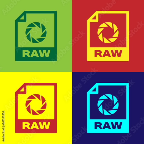 Color RAW file document icon  Download raw button icon isolated on