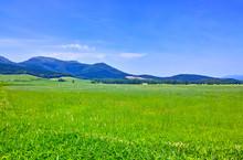 初夏の北海道、草原と...
