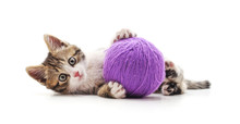 One Striped Kitten With A Ball...