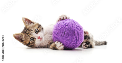 One striped kitten with a ball of yarn. Canvas Print