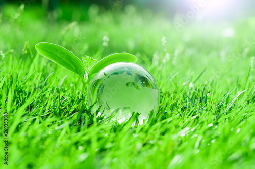Earth ,World, Globe crystal on green grass of Safe world concept and World Environment Day - 269353818
