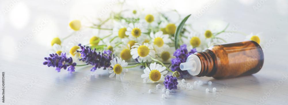 Fototapety, obrazy: Fläschen Globulis mit Lavendel und Kamille-Banner/Hintergrund für Naturheilkunde und Homöopathie