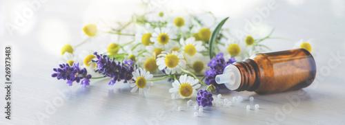 Fotoposter Lavendel Fläschen Globulis mit Lavendel und Kamille-Banner/Hintergrund für Naturheilkunde und Homöopathie