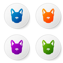 Color Dog icon isolated on white background. Set icons in circle buttons. Vector Illustration