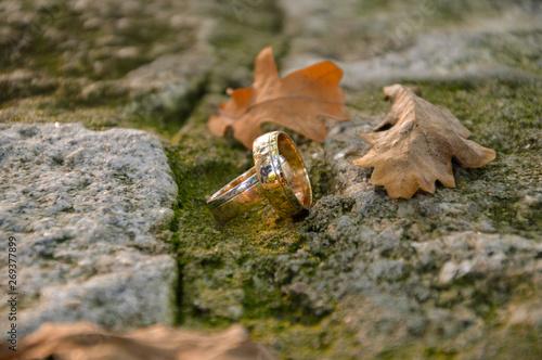 Photo jesienna sesja