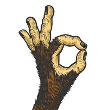 Monkey Animal Hand With Ok Ges...