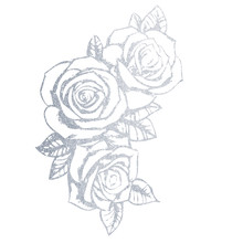 Hand-drawn Silver Rose. Illustration Of A Flower On A White Background.