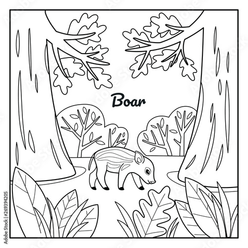 Good boar in forest. Coloring book for kids. Cartoon vector illustration for prints, posters, t-shorts and postcards.