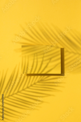 Tropical palm leaf shadow on a yellow blank label. Exotic summer background. Wall mural