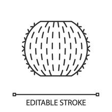 Barrel Cactus Linear Icon