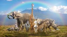 Magical African Wildlife Safar...