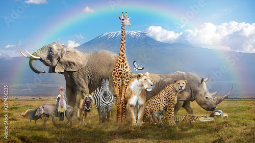 Magical African Wildlife Safari Scene Wallpaper Mural