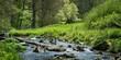 canvas print picture - Die Tauber im Frühlingslicht bei Rothenburg